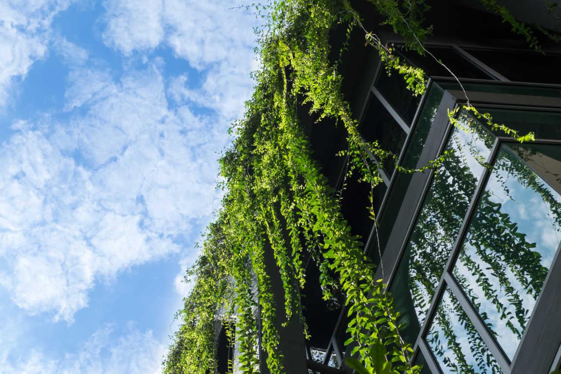 Arquitectura moderna y sostenible